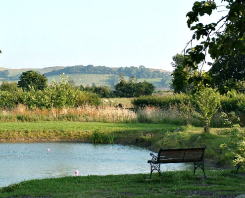 View from Chestnut Cottage of the orchard Carp lake and the Burton Dassett Hills Behind